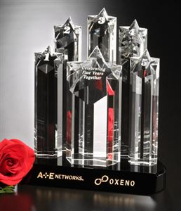 Picture of Prominence Award 9""